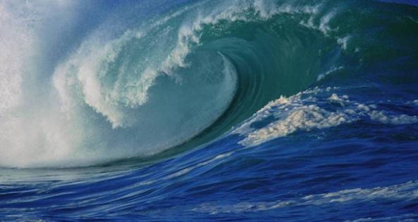 wave2gopvictory