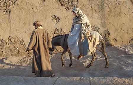 mary-and-joseph-donkey