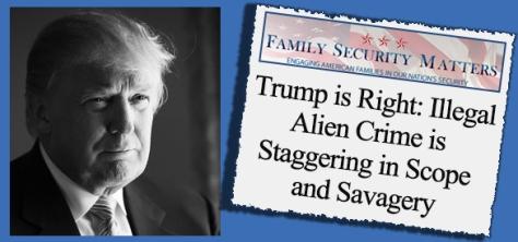 trump-illegal-immigration-crime-validated1
