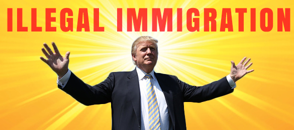 trump-illegal-immigration-validated