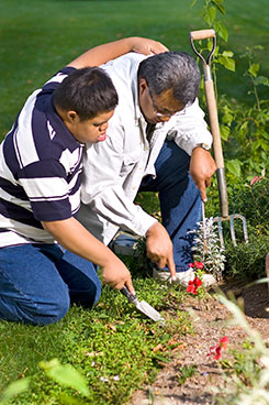 father-son-disability-planting-working