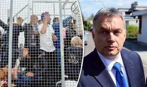 hungary-no-to-immigration
