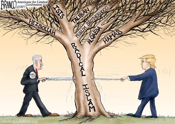 cartoon-radical-ban-trump-timber