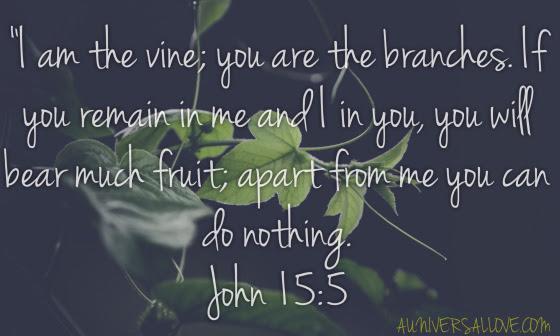 bible-quote-true-vine