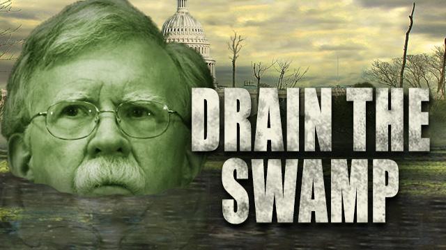 Bolton in swamp